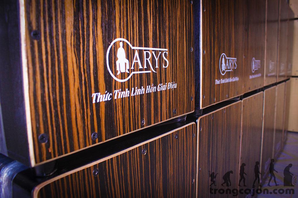 trống cajon arys pad 1