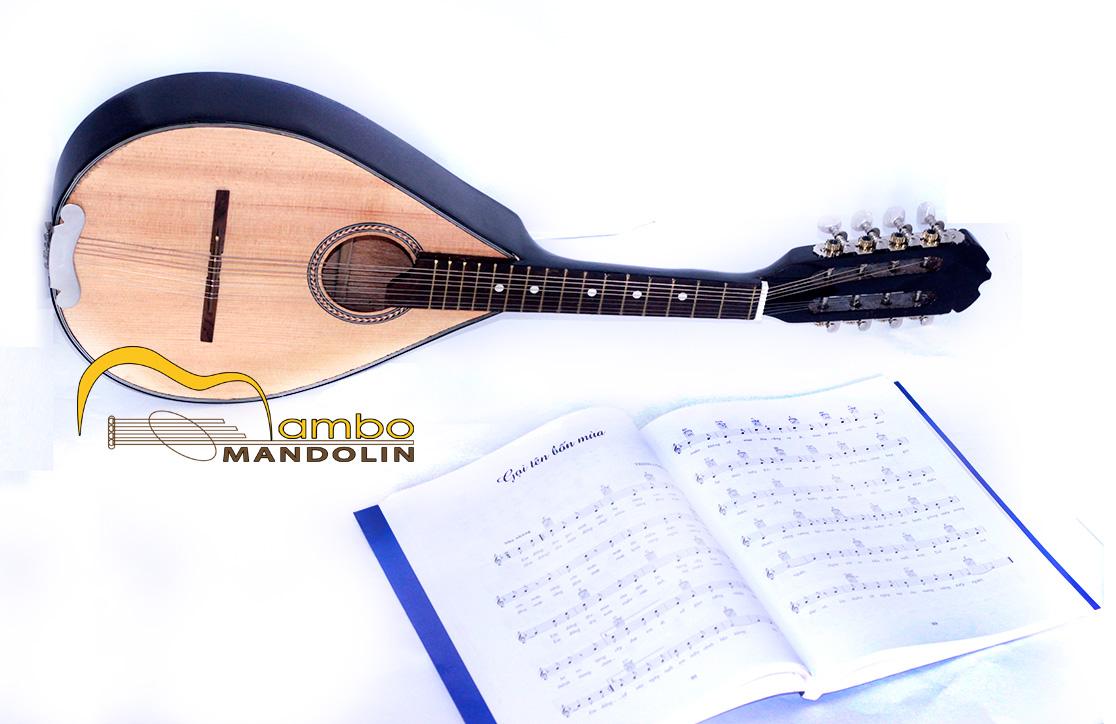 Đàn mandolin chất lượng MB-49 - Mambo