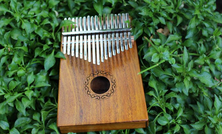 Bạn đã biết đàn Kalimba là gì và cách chơi như thế nào chưa?