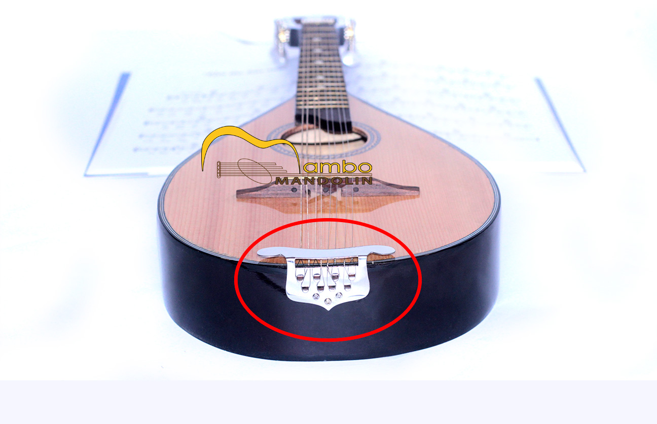 Chi tiết neo dây đàn mandolin chắc chắn