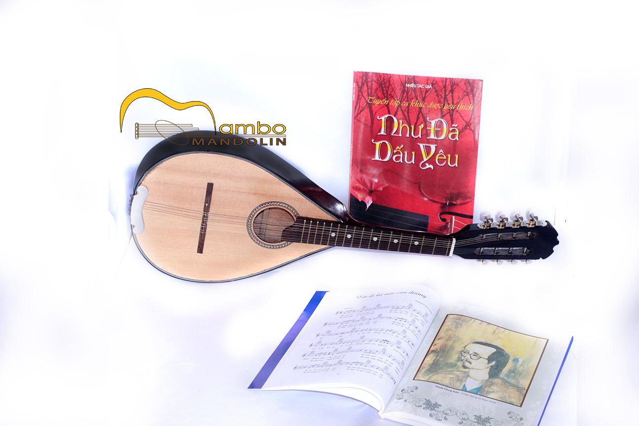 Đàn mandolin mambo giá rẻ